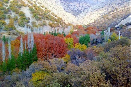 best road in world-vacation iran