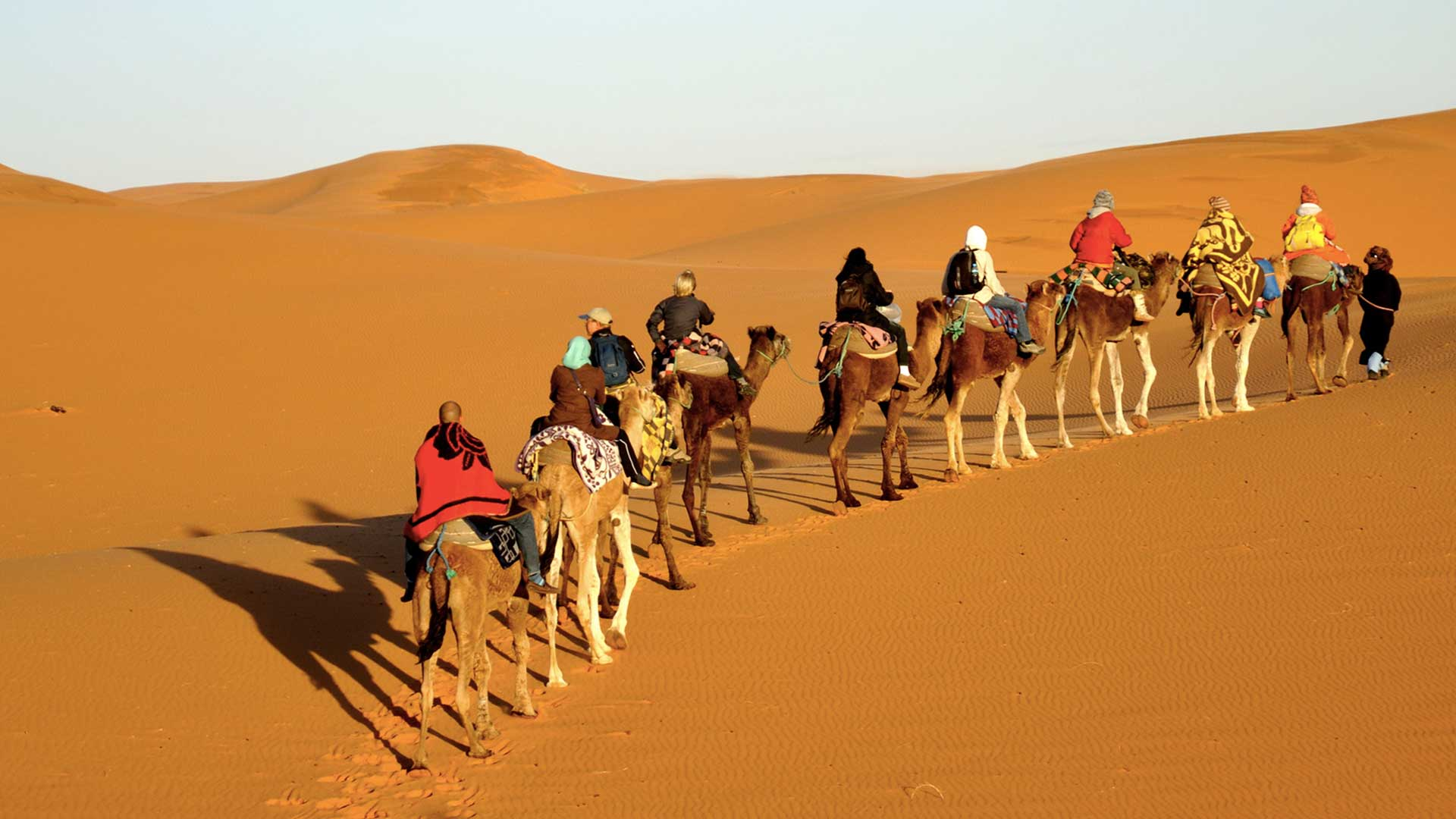 trip to Iran for excitting camel riding
